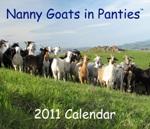 NGIP-Calendar-2011-Cover-150x129