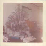 Before the Farm: Christmas Past