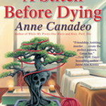 Book Review:  A Stitch Before Dying by Anne Canadeo
