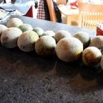 From the Garden:  Cantaloupe