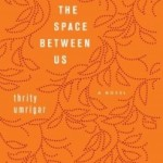 The Space Between Us by Thrity Umrigar – Blog Tour and Book Review