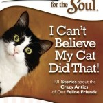 Holiday 2012: Chicken Soup for the Soul Two Book Giveaway