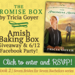 The Promise Box by Tricia Goyer – Blog Tour and Book Review