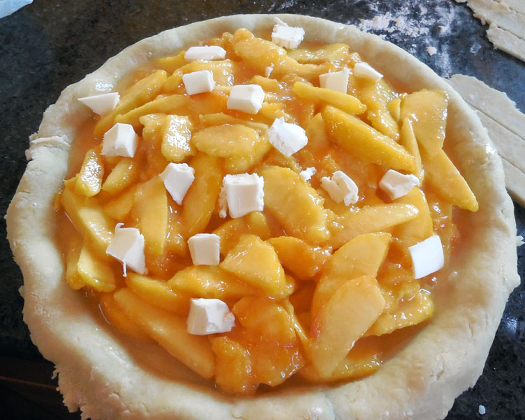 fill pie plate