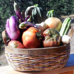 Ratatouille:  Fresh from My Garden – Recipe