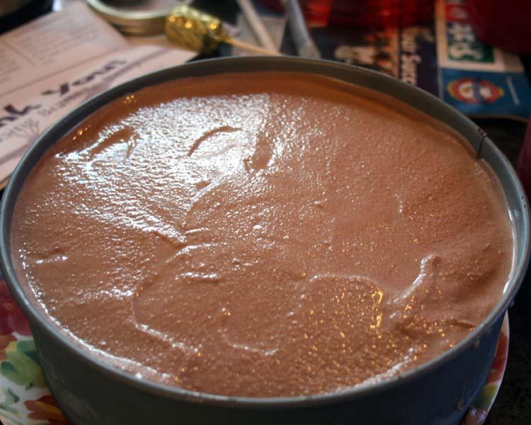 add chocolate ice cream
