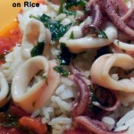 Calamari and Quick Tomato Sauce on Rice – Recipe