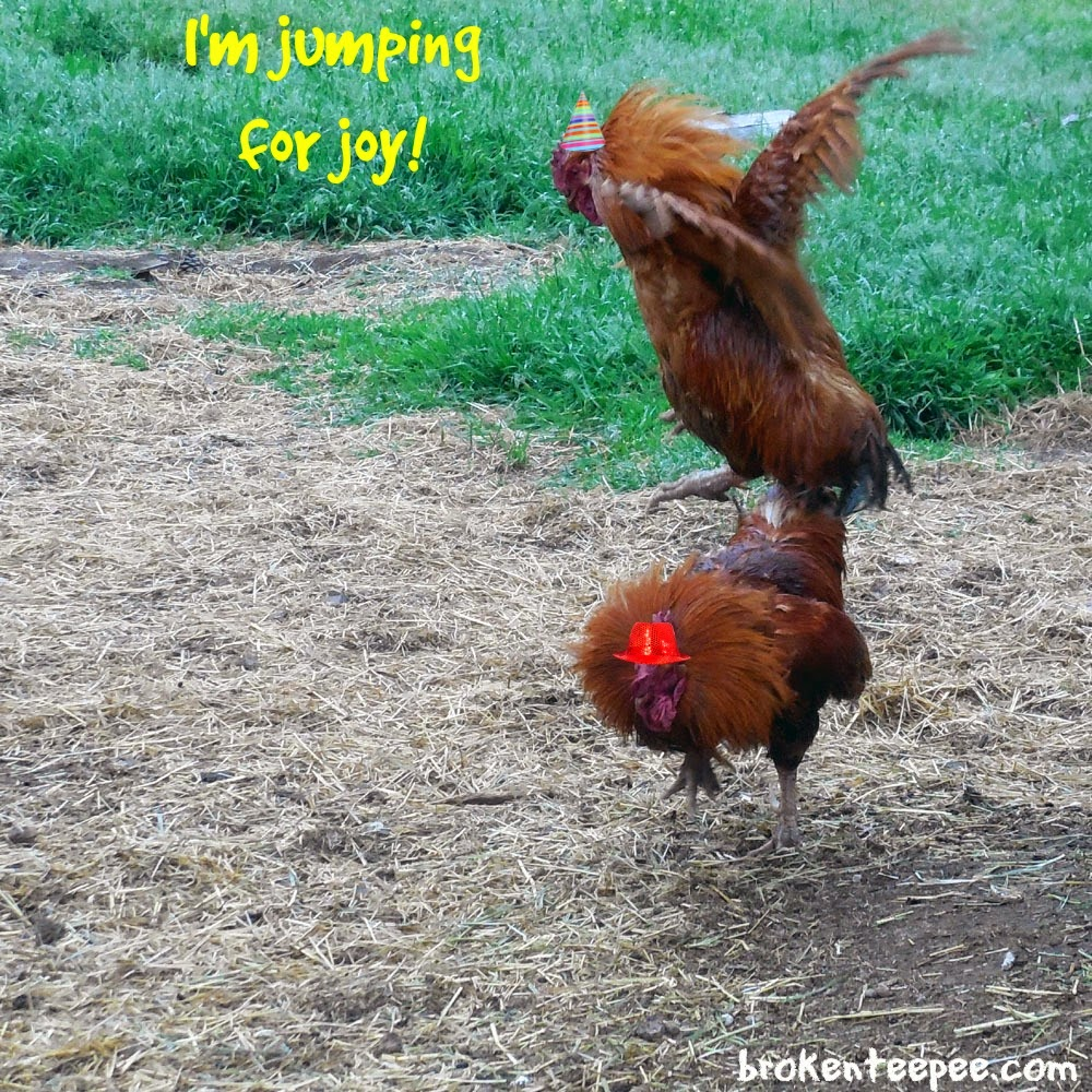 Flying Rooster, Tractor Supply, #PurinaDays, #spon