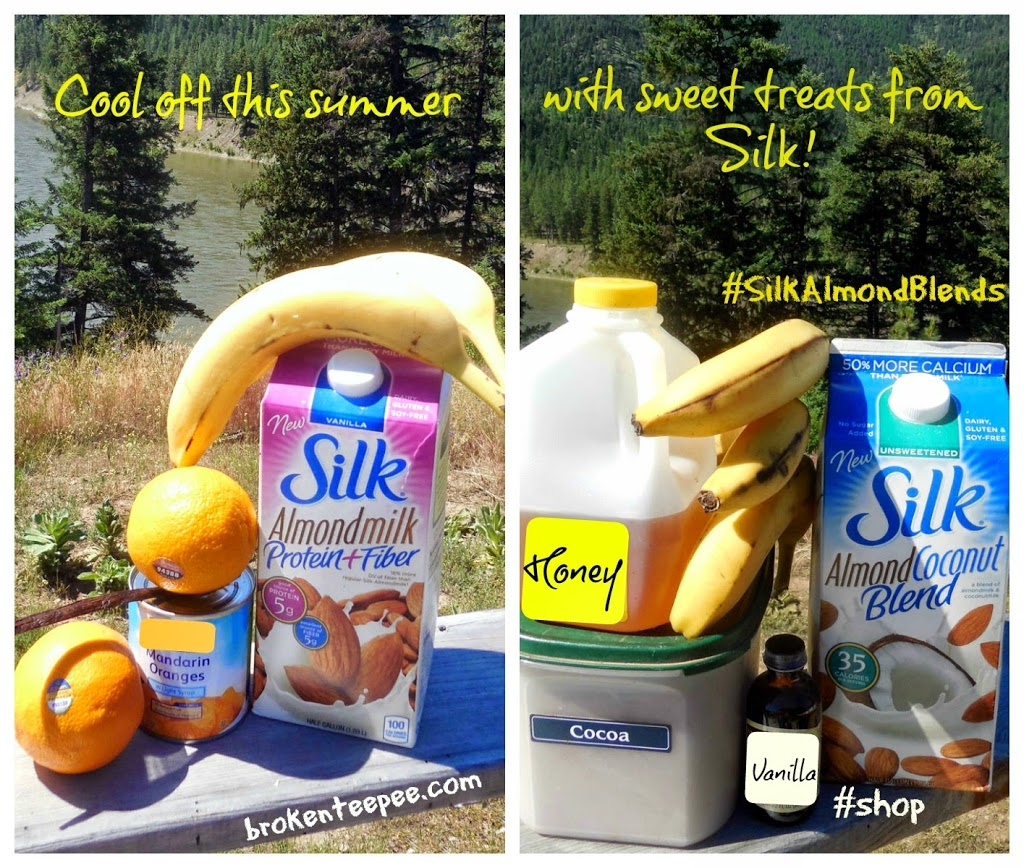 Silk Almond Milk Frozen Desserts, #SilkAlmondBlends, #shop, #cbias