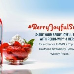 Are you Berry Joyful? I'm Celebrating Berry Season with Cake, Ice Cream and Reddi-Wip® #BerryJoyfulSweeps