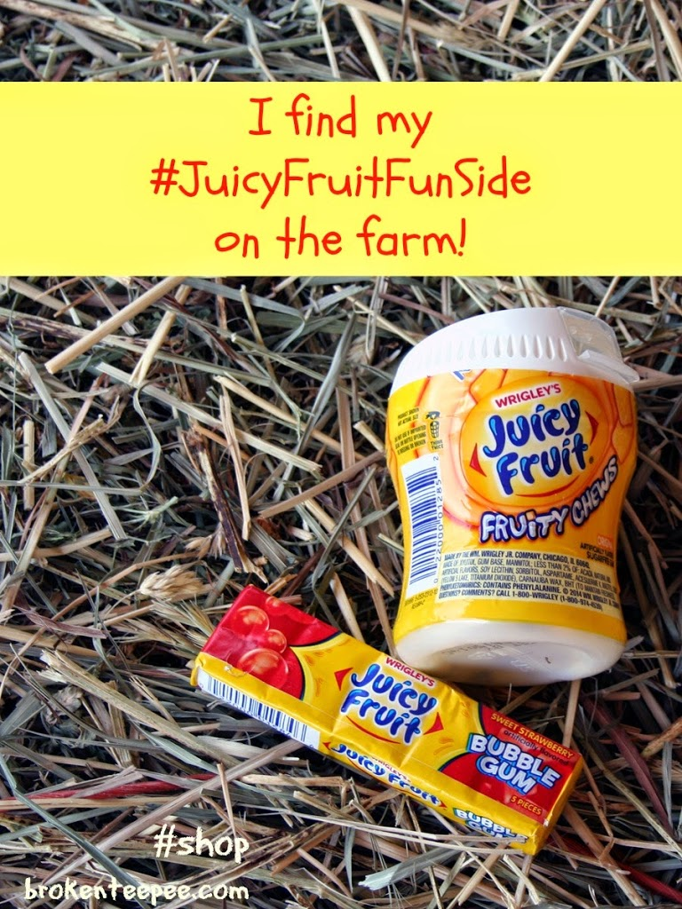 Juicy Fruit on hay pile, Juicy Fruit, #JuicyFruitFunSide, #shop, #cbias