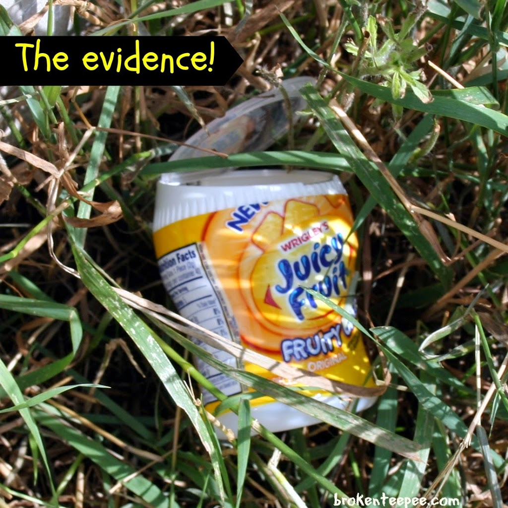 The Evidence, Juicy Fruit Tub in grass, #JuicyFruitFunSide, #shop, #cbias