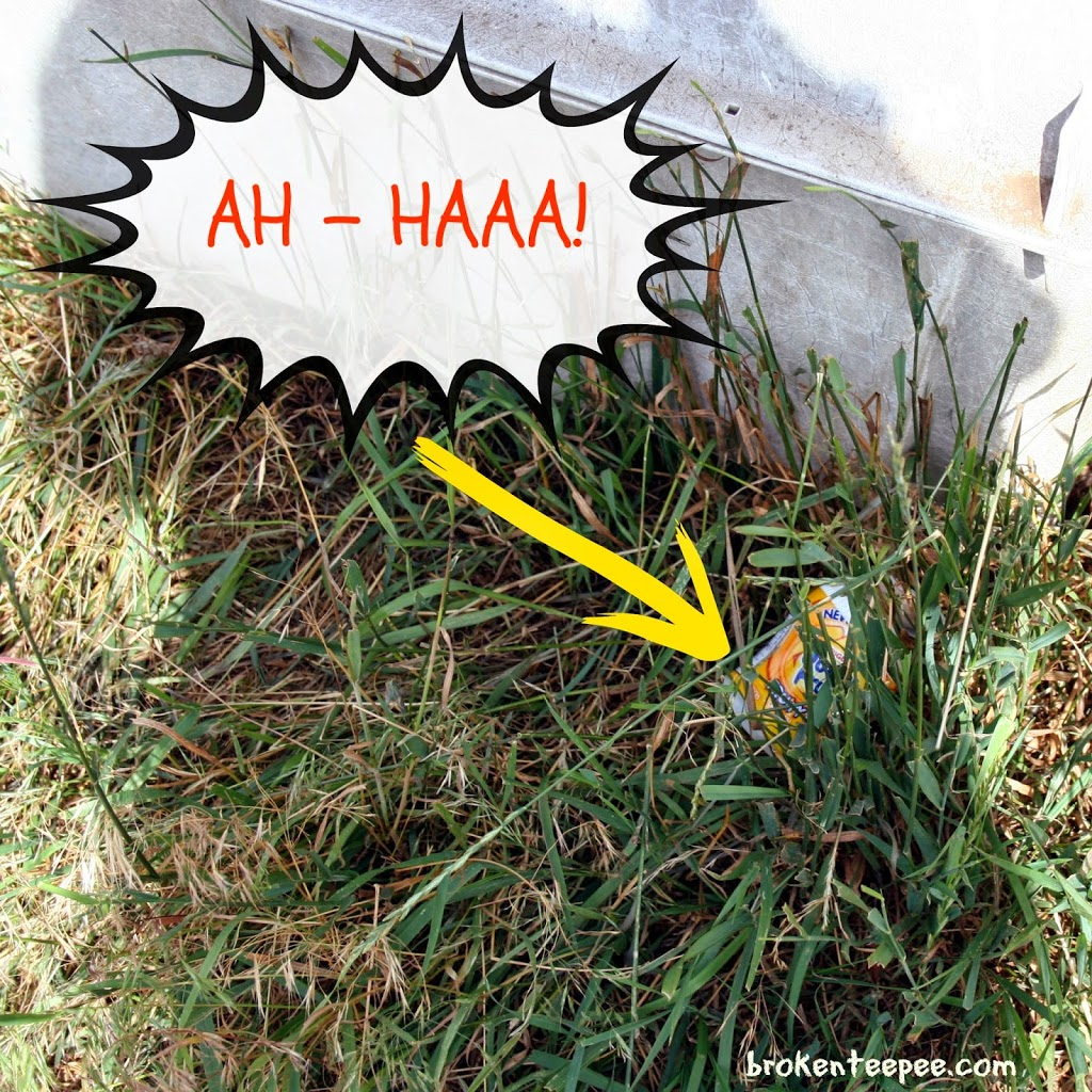 Ah-Haa, canister found, Juicy Fruit in grass, #JuicyFruitFunSide, #shop, #cbias