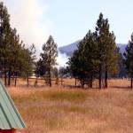 Ruminatin' – Fire Season 2014