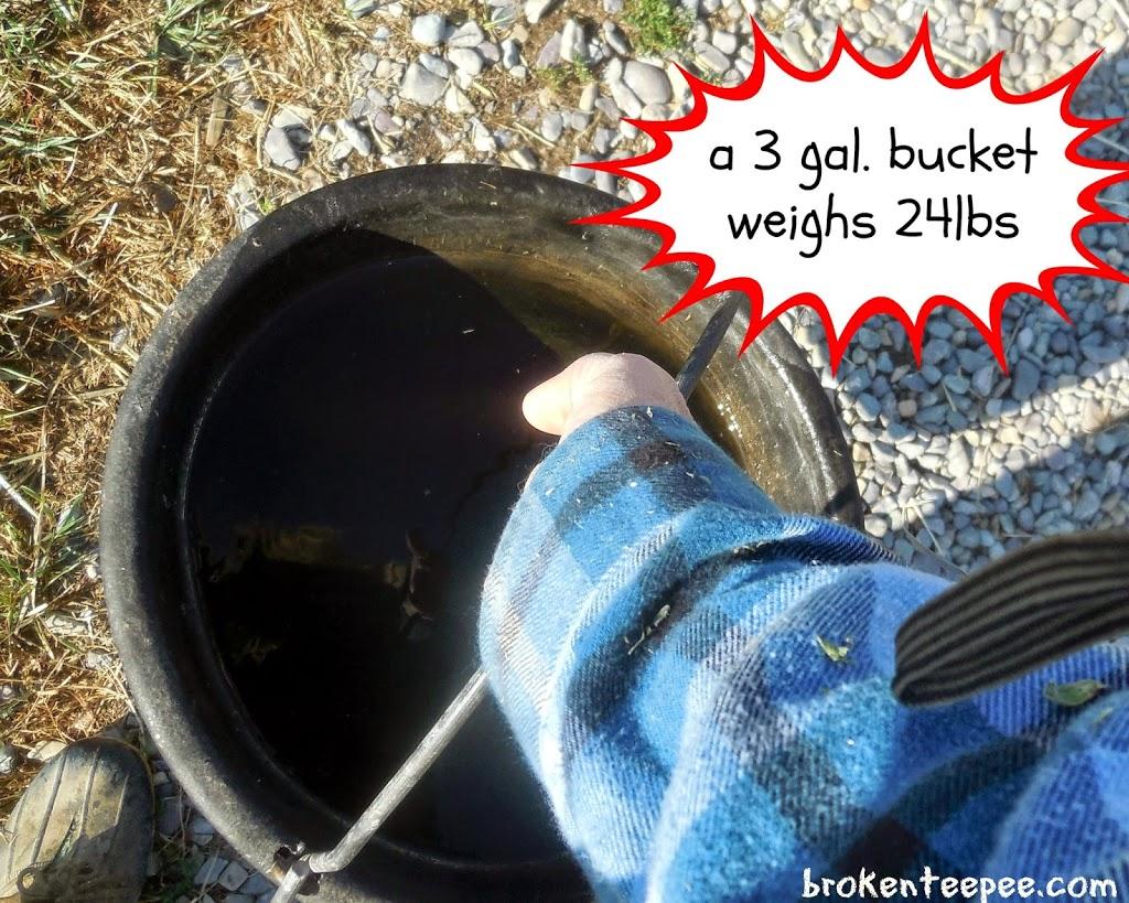 3 gallon bucket, #BalanceRewards, #shop, #cbias