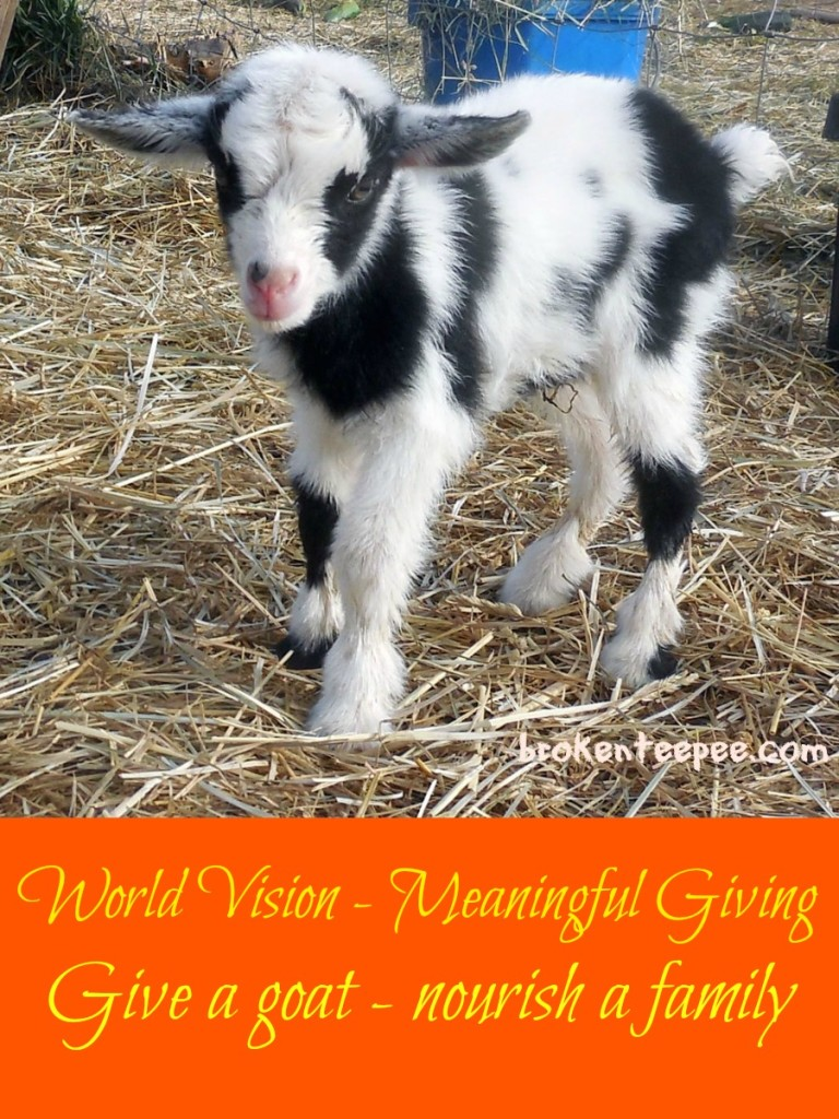 World-Vision-Give-a-Goat