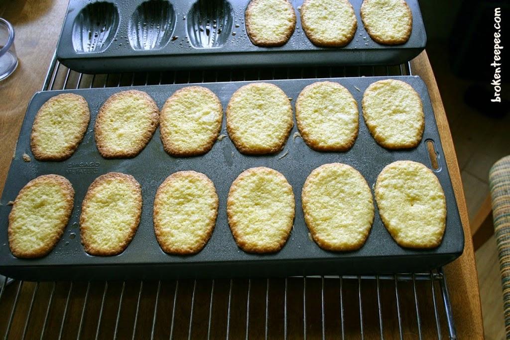 baked chocolate chip madeleines in madeleine pan