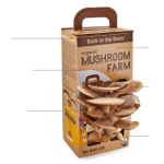 You Can Grow Your Own Mushrooms
