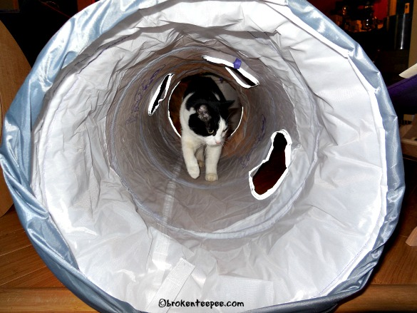 harry-in-tunnel
