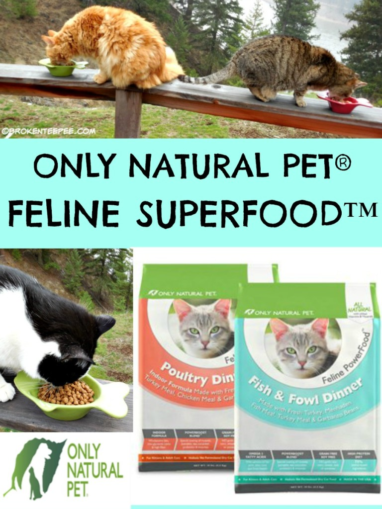 Only Natural Pet Feline Superfood, Sherpa the Farm cat, Stinky the Farm Cat, #PawNatural, #BlogPaws, #ad