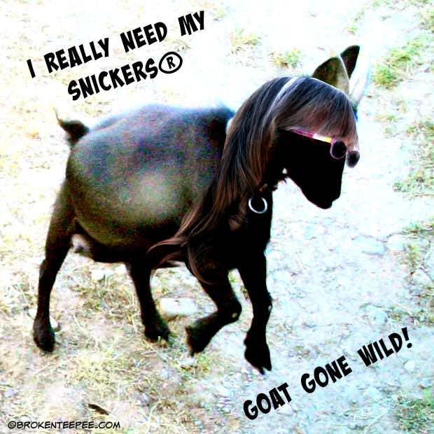 SNICKERS®, Goat Gone Wild, #WhenImHungry, #CollectiveBias, #Ad