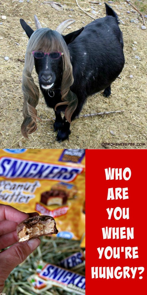 Who Are You When You Are Hungry? #WhenImHungry #CollectiveBias #Ad