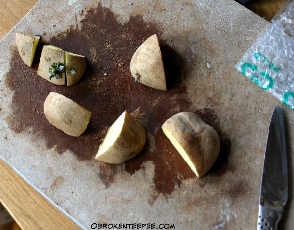 cut potatoes for planting