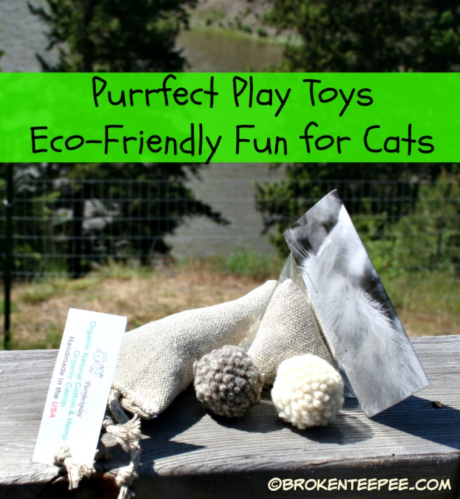 Purrfect Play Toys, #sponsored