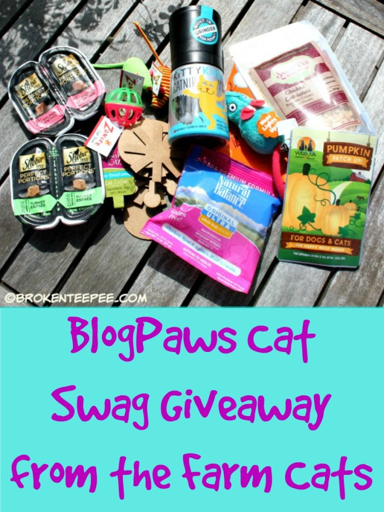 Cat Swag Giveaway, #BlogPaws, #TheMountain, #sponsored