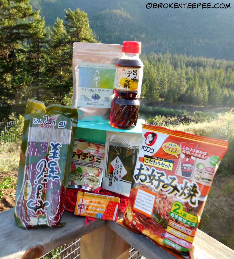 Try the World, subscription box, July box, Japan, sponsored