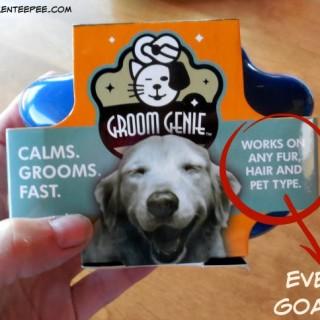 Groom Genie, #sponsored