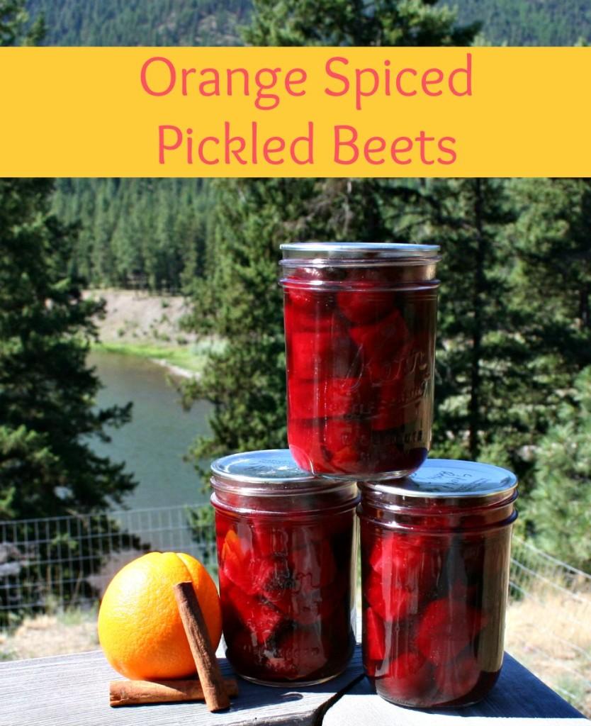 Orange Spiced Pickled Beets