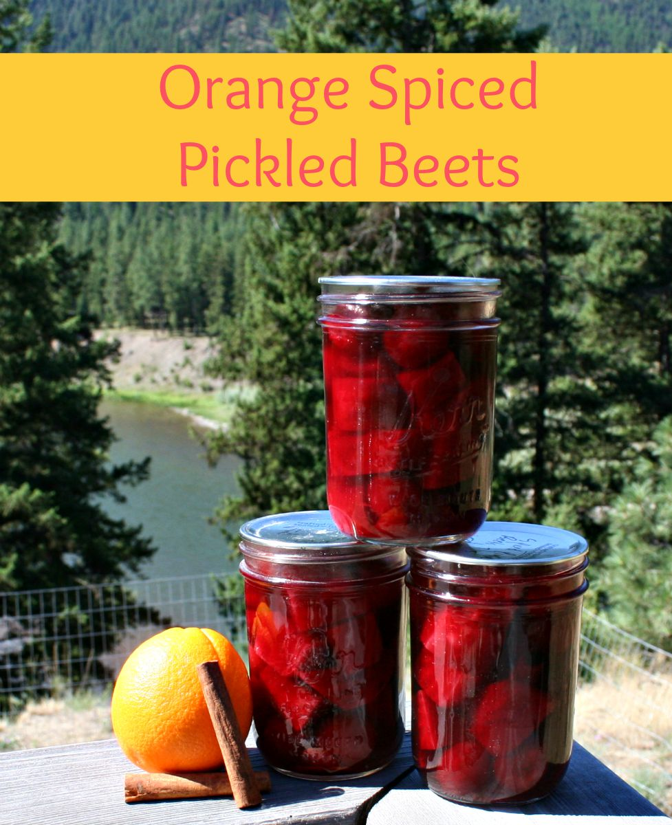 Pickled Beets – A New Way