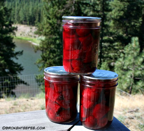 Orange Spiced Pickled Beets Recipe