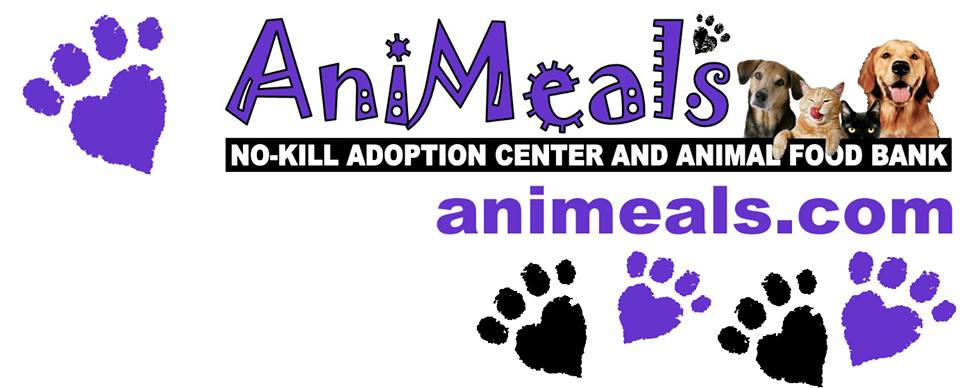 AniMeals logo, International Cat Day