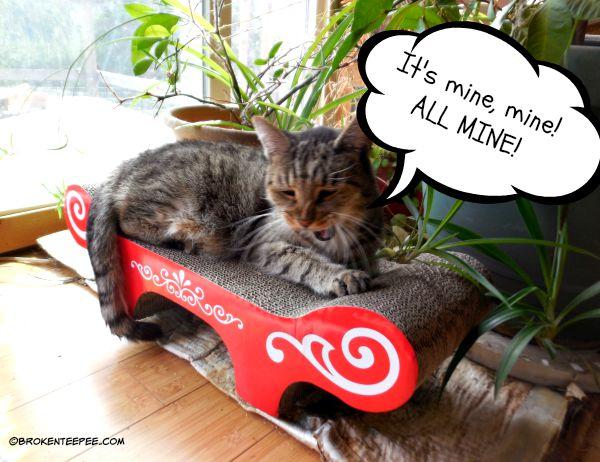 CatIt Cat Scratcher, Chewy.com, #sponsored