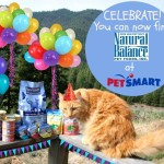 The Farm Cats Celebrate Natural Balance Pet Foods at PetSmart #PetSmartStory