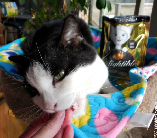 True Science, Delightibles, Harry the Farm cat, #sponsored