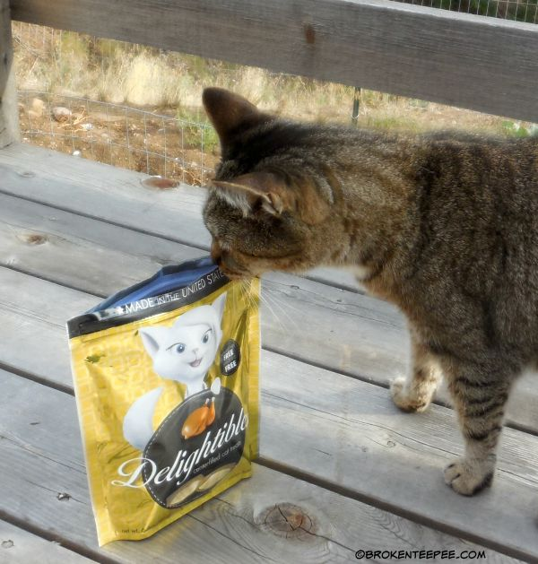 True Science, Delightibles, Stinky the Farm cat, #sponsored