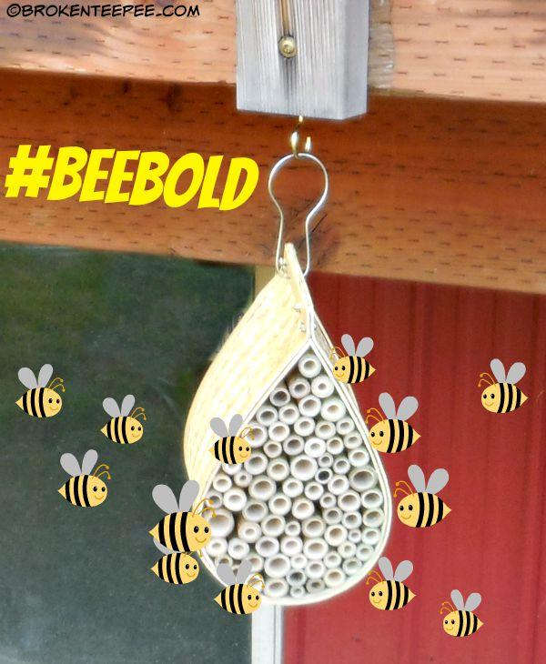 Mason Bee House, Friends of the Earth, Mamavation, #BeeBold, #sponsored