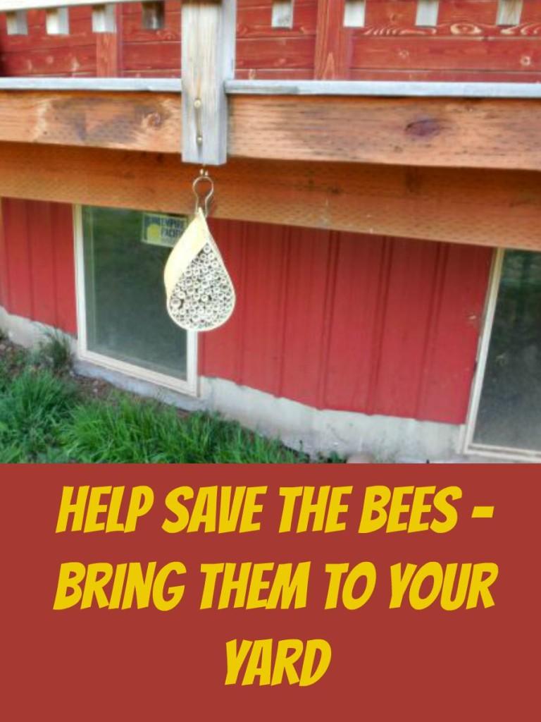Help Save the Bees, Mamavation, BeeAction, #BeeBold, #sponsored