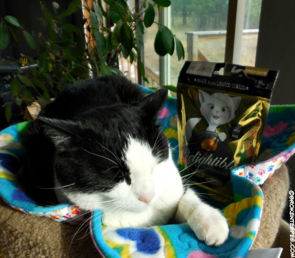 Delightibles, True Science, cat treats, #sponsored