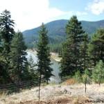 Ruminatin' on Wildfires in Montana