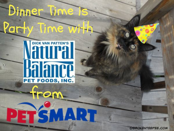 Natural Balance at PetSmart, Natural Balance Cat Food, The Farm Cats, #sponsored
