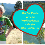 Find Your Passion with the Russo Rescue Collection Pet T Shirts from #MountainArtwear