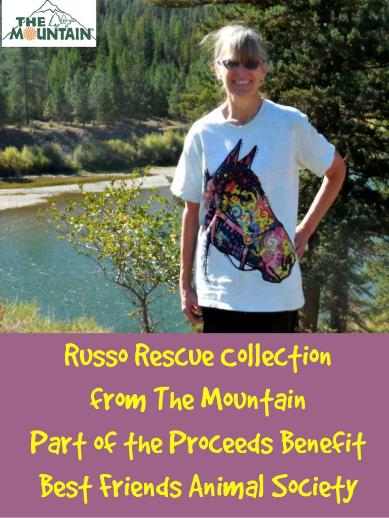 The Mountain, Funky Horse pet t shirt, Dean Russo Rescue Collection, #MountainArtwear, #sponsored