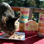 The Farm Cats Eat Grain Free Thanks to Purina Muse®