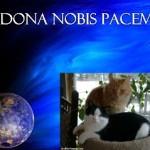 Dona Nobis Pacem #Blog4Peace