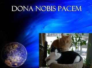 http://brokenteepee.com/dona-nobis-pacem/