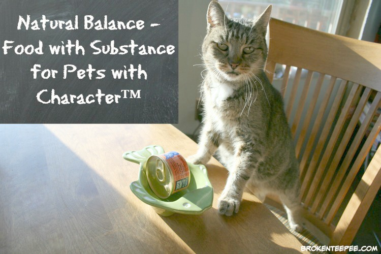 Stinky the Farm Cat Finds Her Best Pet Food – #NaturalBalance
